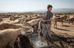 مشکل آب برخی روستاهای سرخس با جدا کردن آب دام از شرب حل میشود