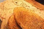 نصب دوربین در آردخانه نانواییهای سرخس